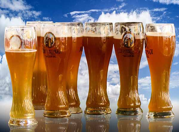 todos los tipos de cervezas que hay