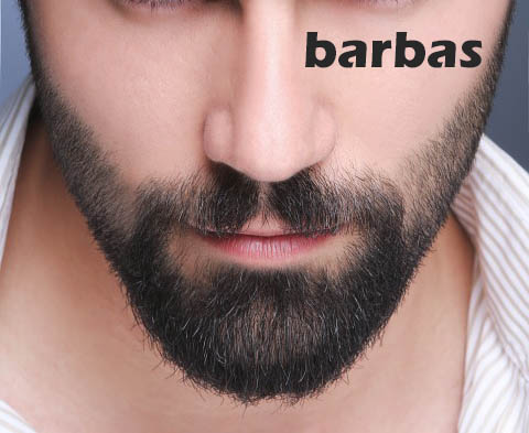 los tipos de barbas que existen