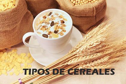 Los diferentes tipos de cereales